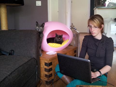 Joyce aan het werk terwijl Fuzzy lekker ontspant en Isis alles in de gaten houdt