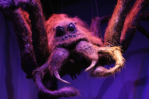 Aragog @ Warner Bros. Studio Tour London